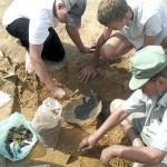 Grupie archeologicznej udało się znaleźć 9 podobnych do tego obiektów