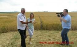 Kazimierz-Ogonowski---różdżkarz-w-akcji-przed-objektywem-kamety-TVN24